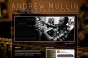 Andrew Mullin / Triceratone Audio